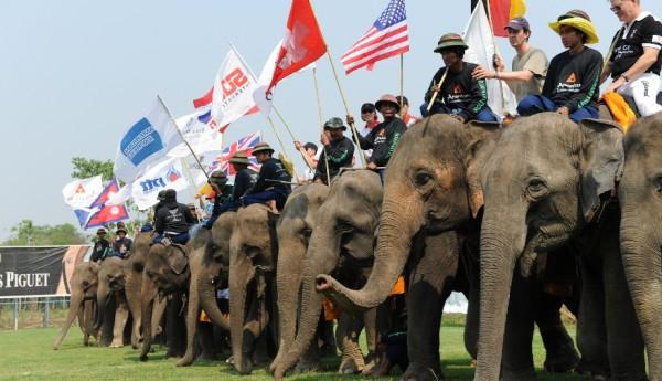 Kings Cup Elephant Polo Elephants