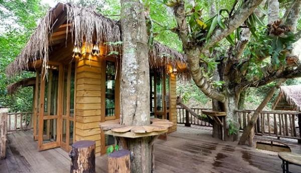 Treehouse_Chiang Mai