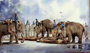 Thanakorn's Elephants