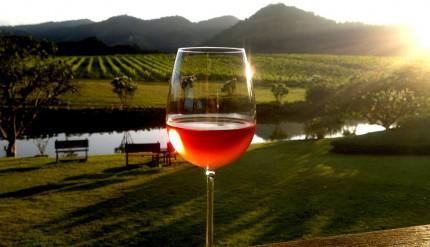 Wine @ Leisure 1