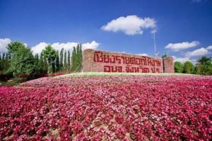 Chiang Rai ASEAN flowers