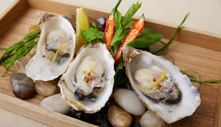 Abbot's The best oyster of the day selection